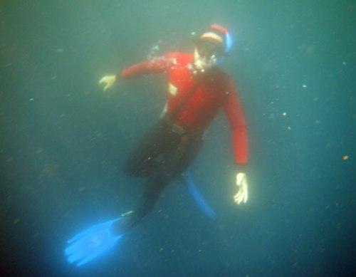 Ascendiendo de un encurntro profundo con los atunes.