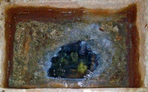 Surgencia de agua sulfurosa de la Fuente de la Belleza en las inmediaciones del Balneario de Panticosa.
